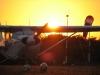aerodrome-belves4